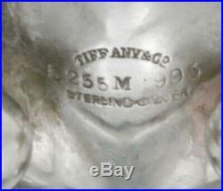 TIFFANY Sterling Open SALT LEAF